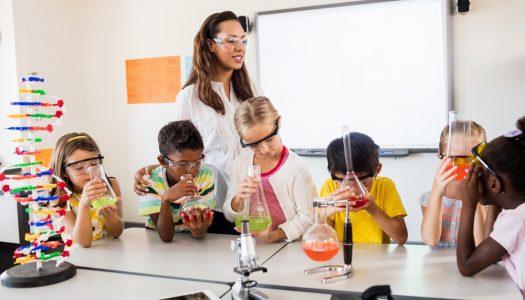 Estudo de células com o 5º ano – Colégio Expoente